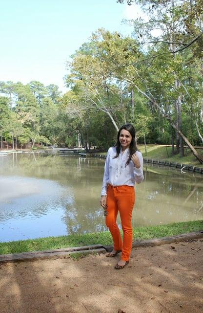 Along the Bayou