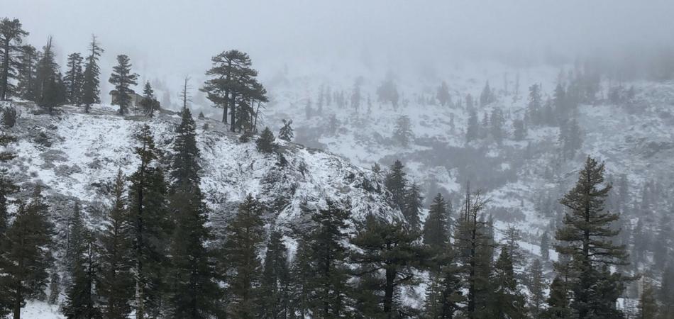 Let's Shop: Winter Weather Picks ft. Moose Knuckles