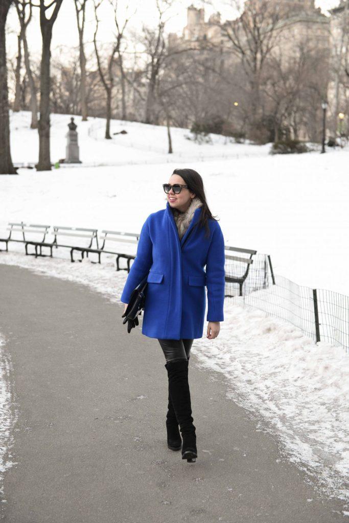 Cobalt Blue Coat in Central Park