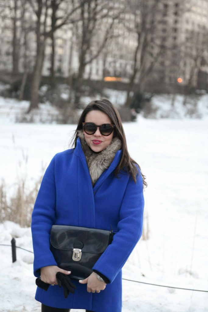Cobalt Blue Coat in Central Park