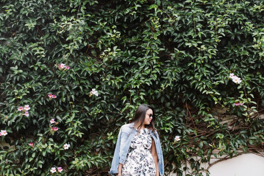 ivy wall and floral printed dress