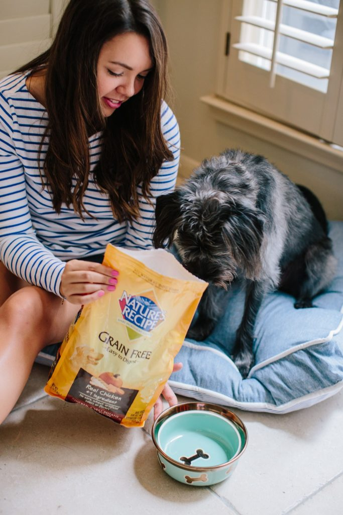 Helpful tips for switching dog food, Nature's Recipe dog food