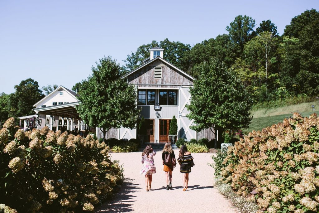 Houston-based lifestyle blogger Adored by Alex shares a Charlottesville travel guide