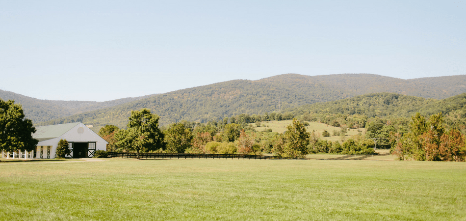 Charlottesville Travel Guide - Adored by Alex