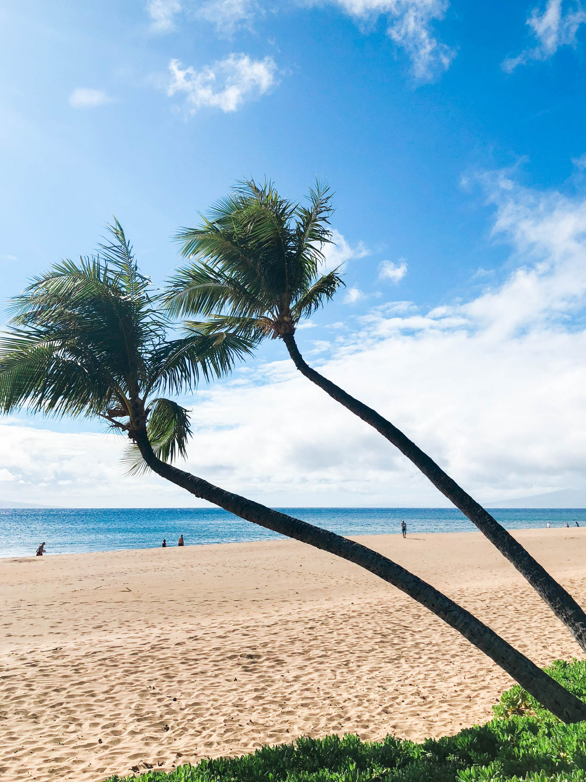 Kaanapali Beach, Maui Hawaii | Adored by Alex