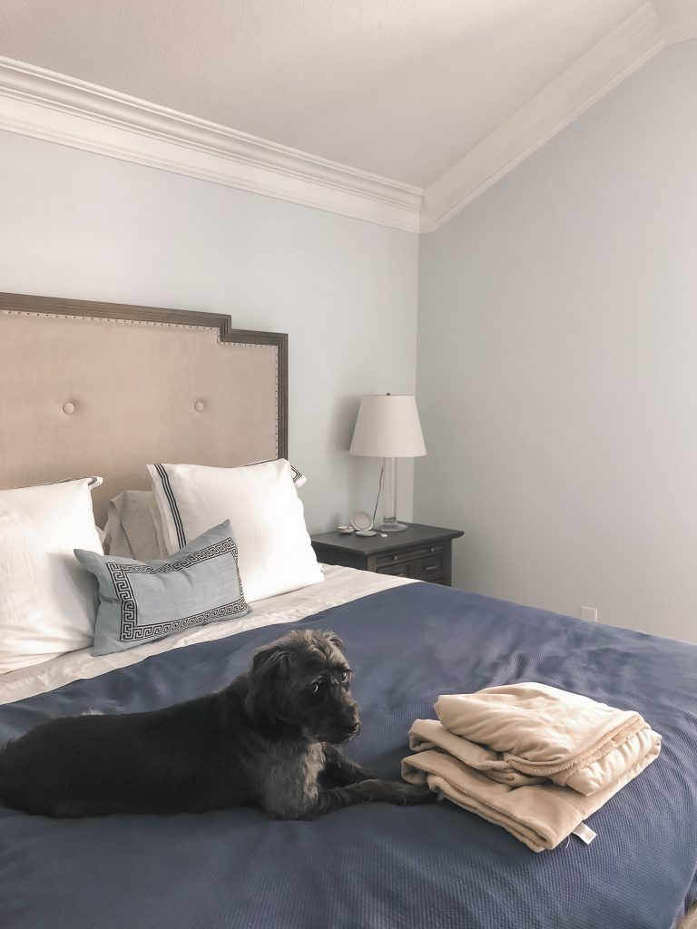 Before shots of a master bedroom refresh on a budget