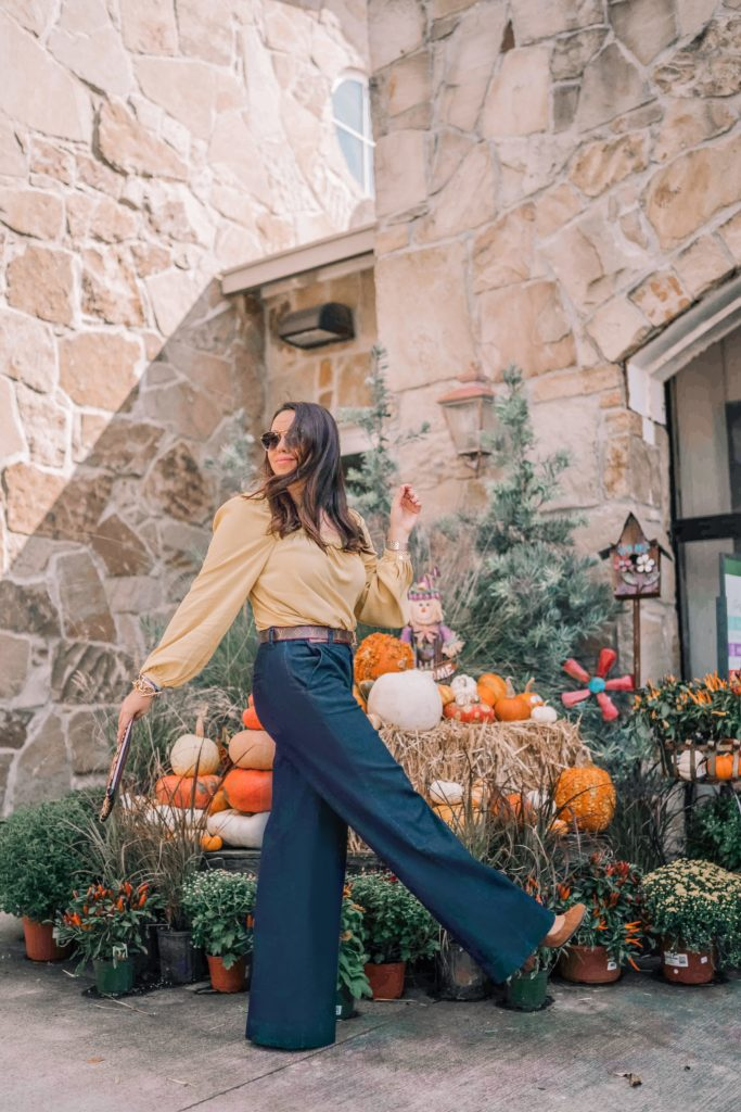 Wide-leg dressy denim pants