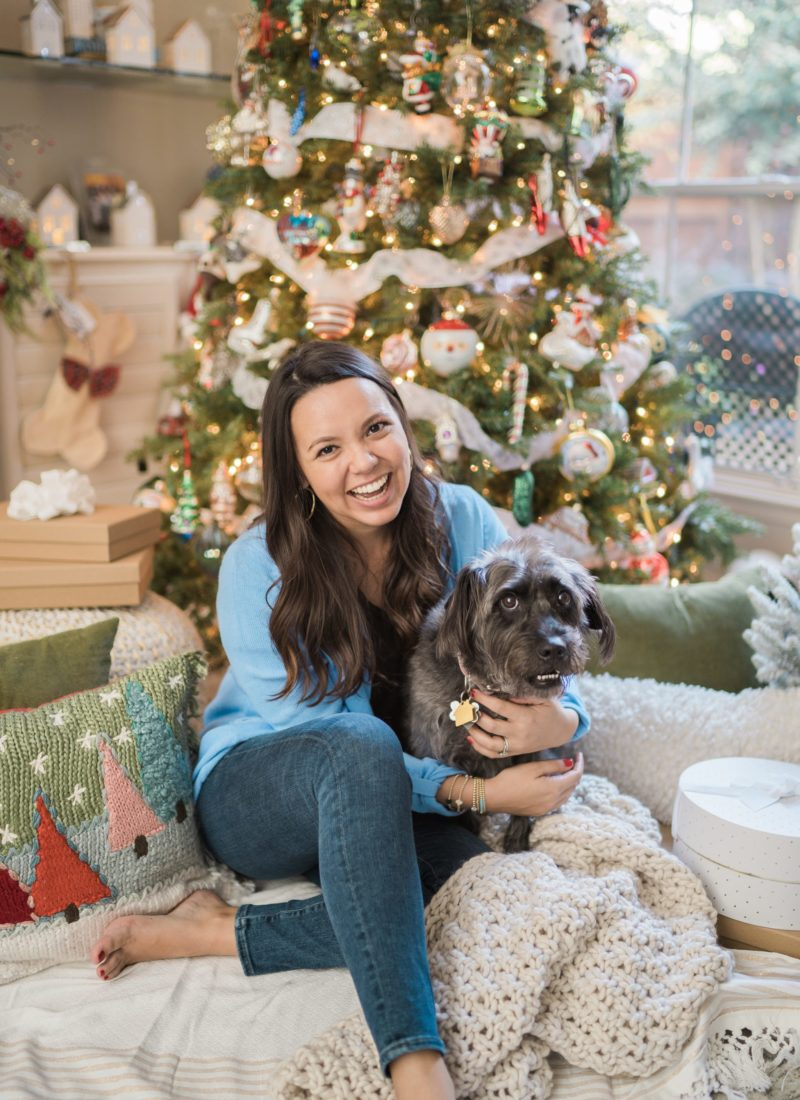 3 Ways to Include your Pup in Holiday Festivities