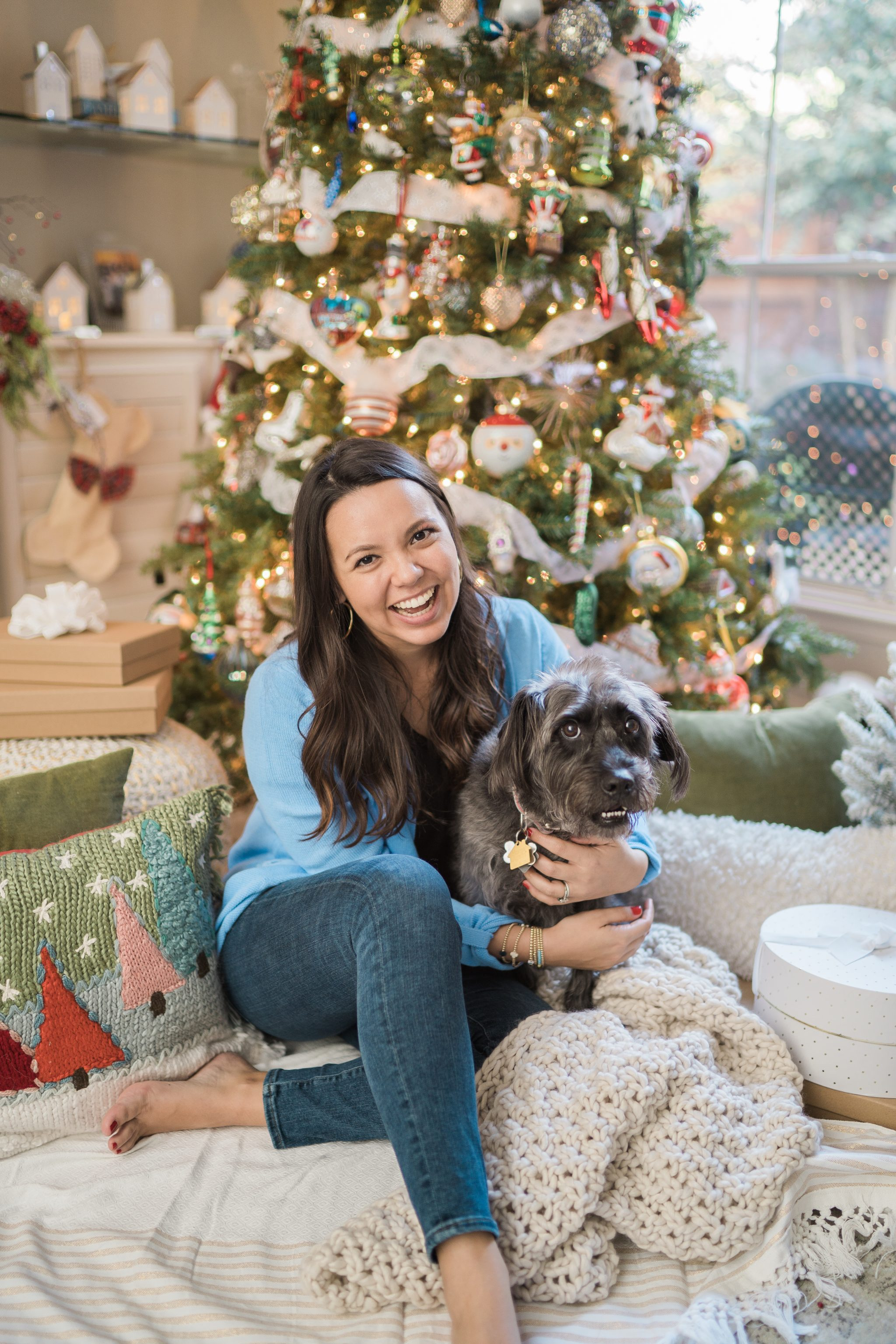 celebrating the holidays with your family dog