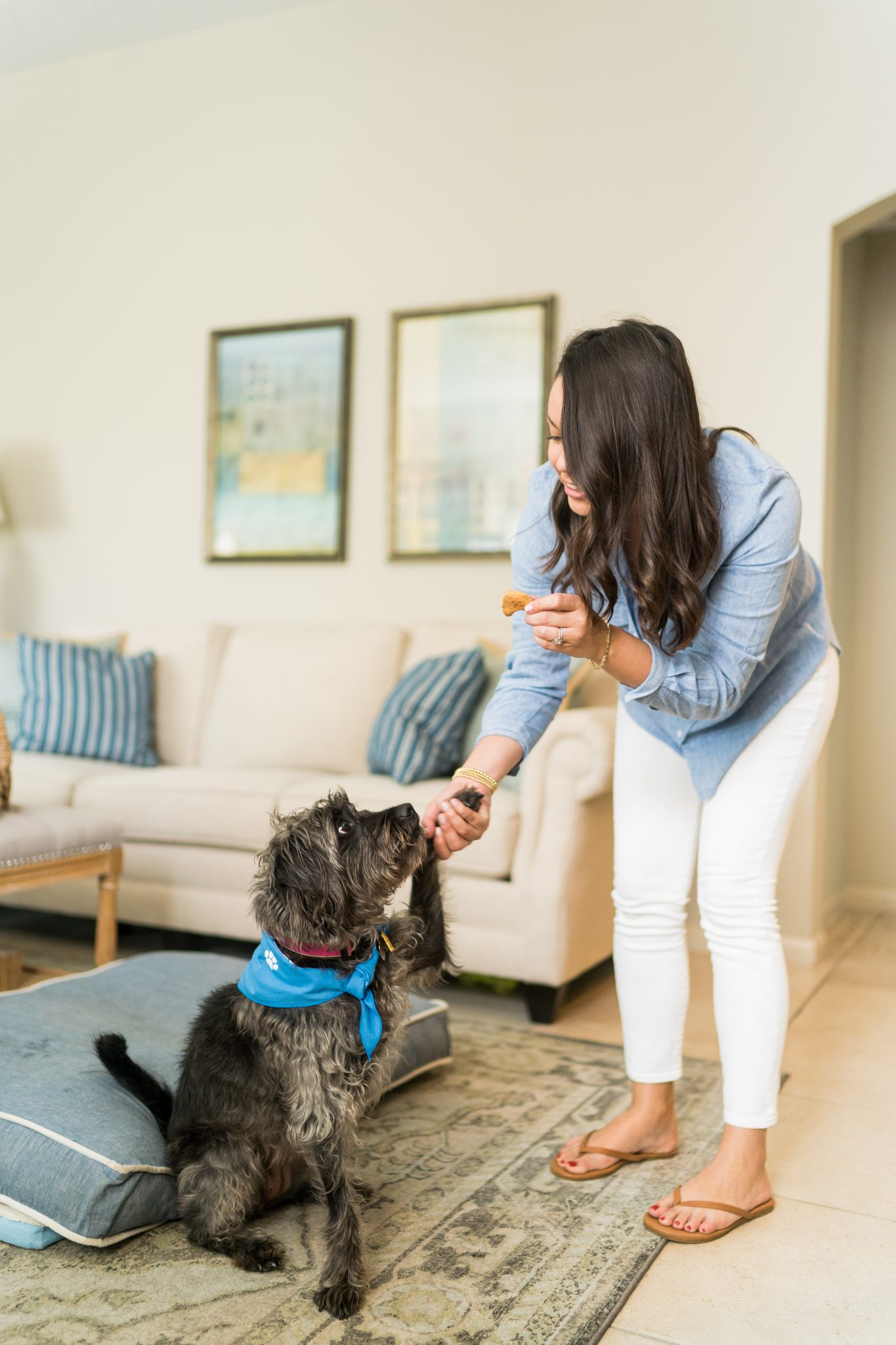 Working at home with your furry friend