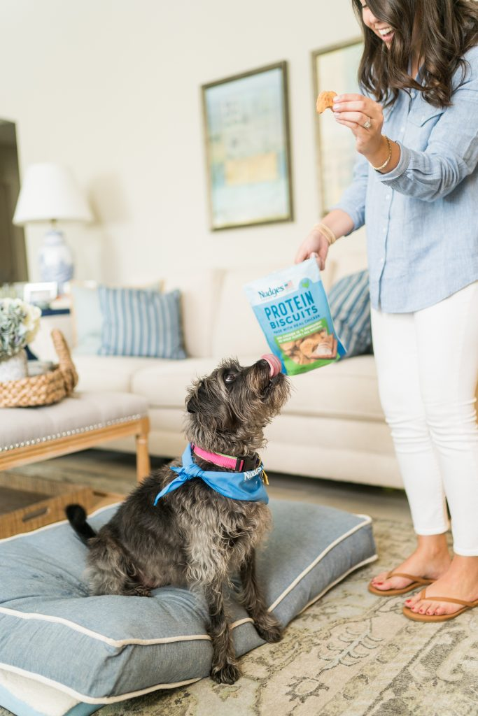 Nudges Protein treats for dogs