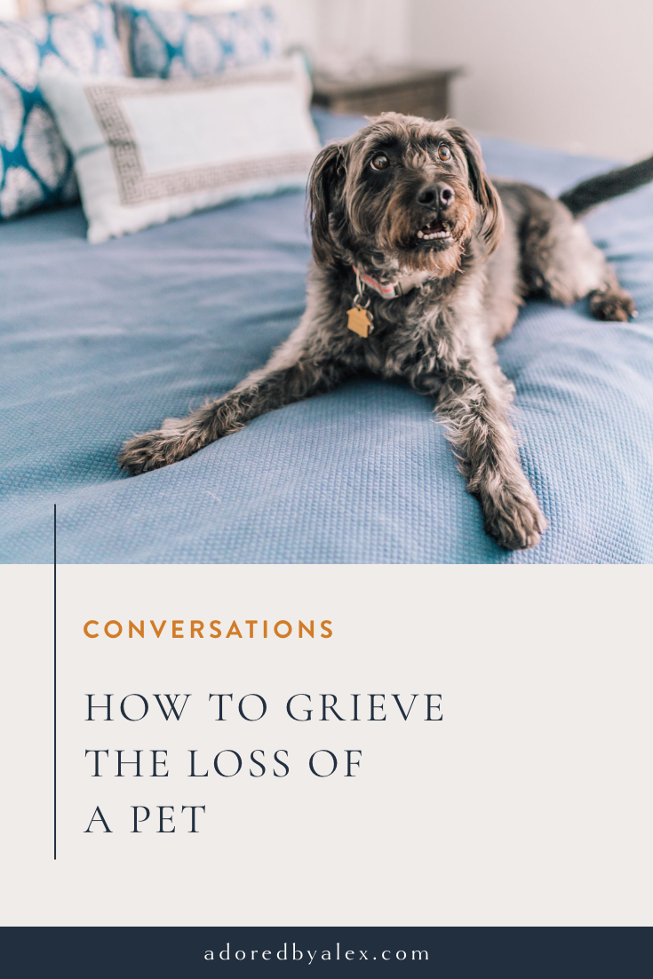 How to grieve the loss of a pet