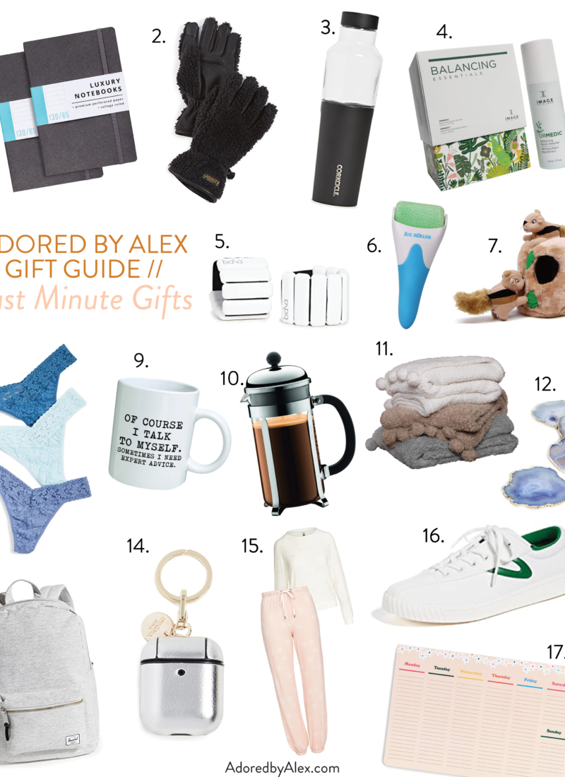 Holiday Gift Guide 2020 // Last Minute Gifts